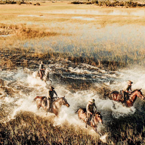 In The Saddle. Horse Riding Safari Holiday Macatoo, Okavango Delta, Botswana. Galloping through the water.