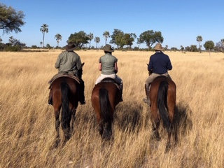 Riding in Botswana