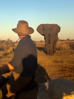 Riding with elephant
