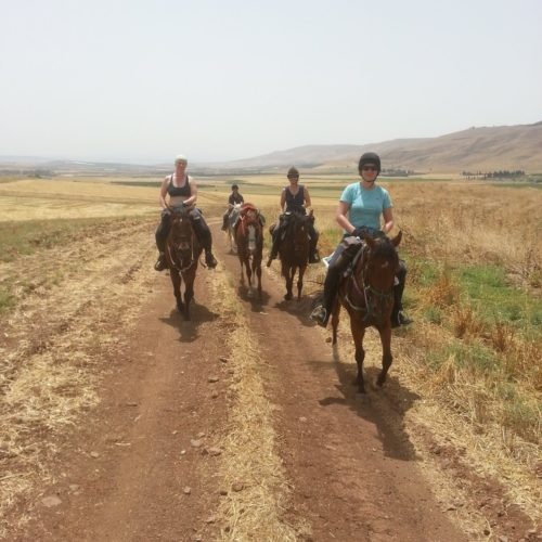 Israel Galilee horse riding