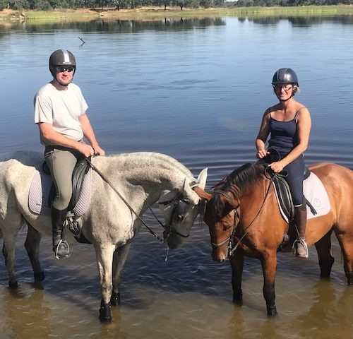 Horses in the water