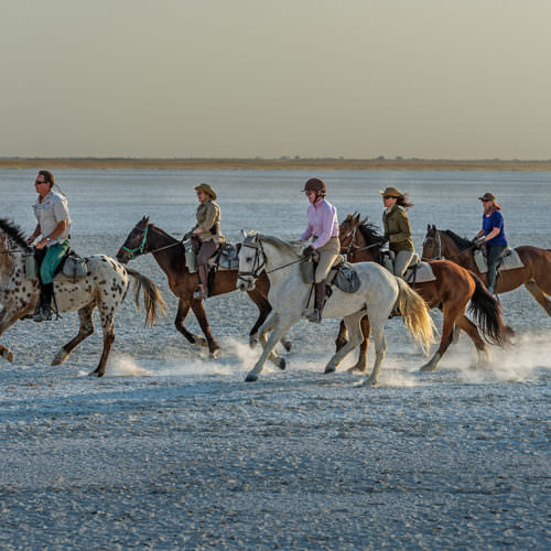 The Kalahari Riding Safari in the Makgadikgadi salt pans of Botswana. Horses cantering.