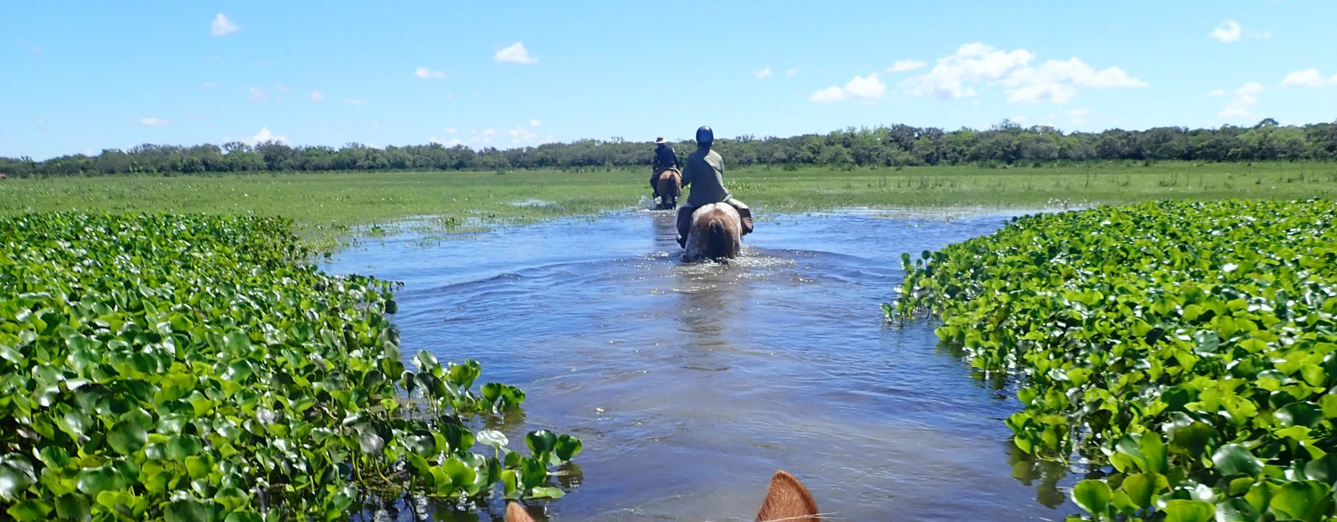 Horse Riding in Uruguay