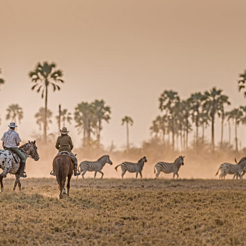 The Kalahari Riding Safari in the Makgadikgadi salt pans of Botswana. Horses, zebra.