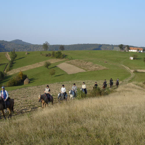 Miles and miles without any fences. Riding holidays in Transylvania with In The Saddle.