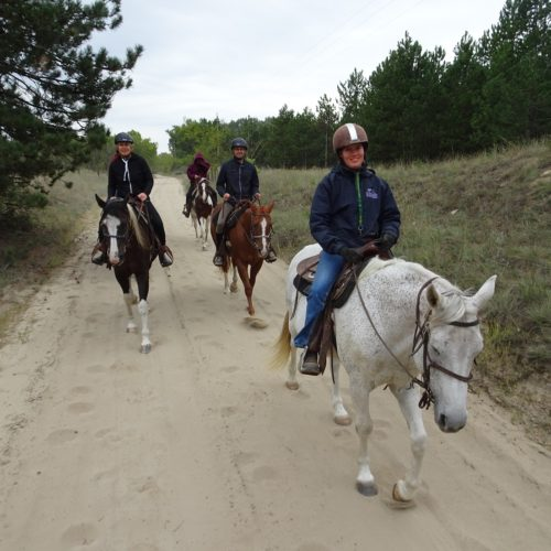group of horse riders on sandy tracks in Hungary
