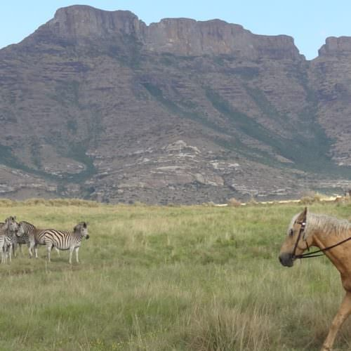 Riding at Moolmanshoek, South Africa