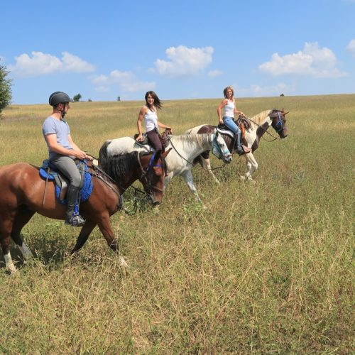 In The Saddle trail riding holidays in Bulgaria. Horses and riders in the countryside.