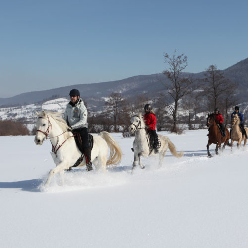 Riding in the snow in the Carpathian Mountains, Romania