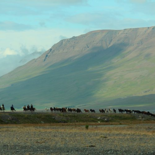 Iceland riding valley