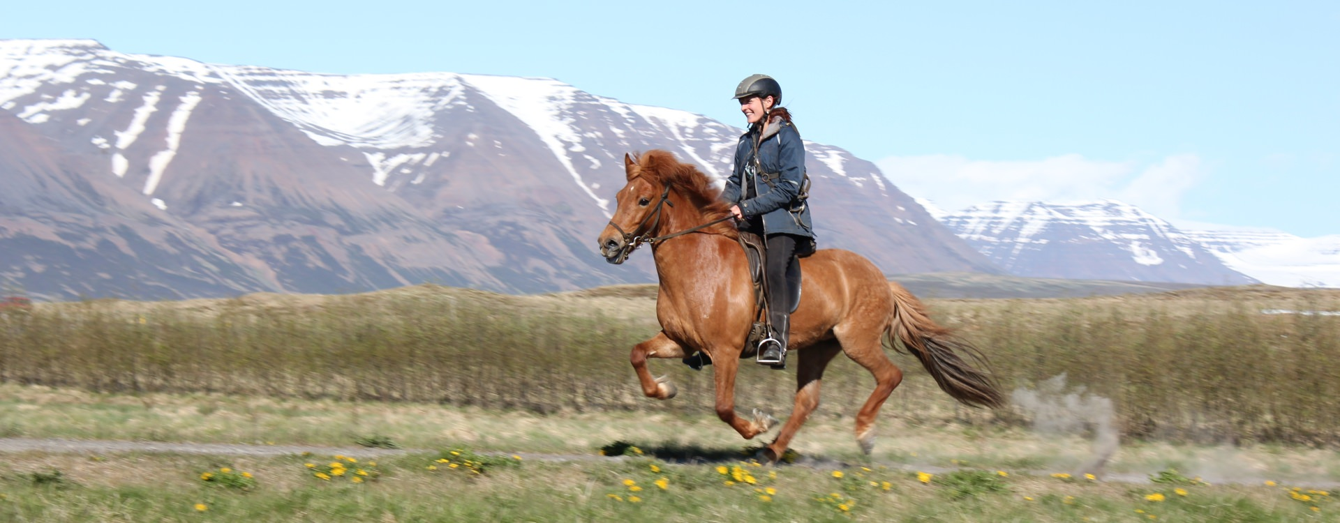 Riding in Iceland