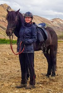 Iceland horse and rider