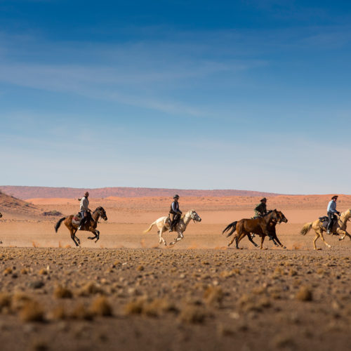 Galloping in Namibia