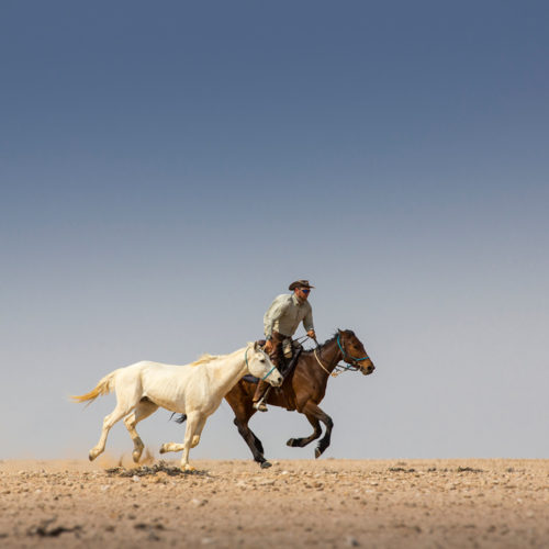 Fast riding in Namibia