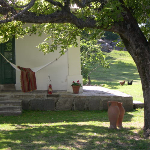 Garden hammock in the garden at Estancia Los Potreros. Relax on a Riding Holiday in Argentina with In The Saddle