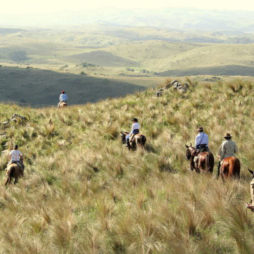 Horse riding in Argentina.