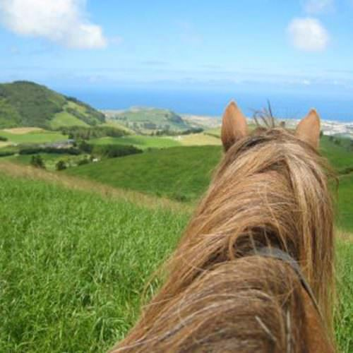 Horses on the Green Island Trail - Riding Holidays on the Azores. View from the saddle