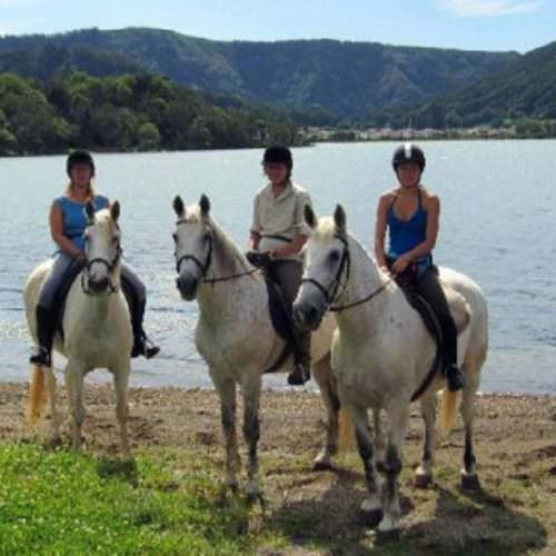 Horses on the shores of Sete Cidades (twin lakes).