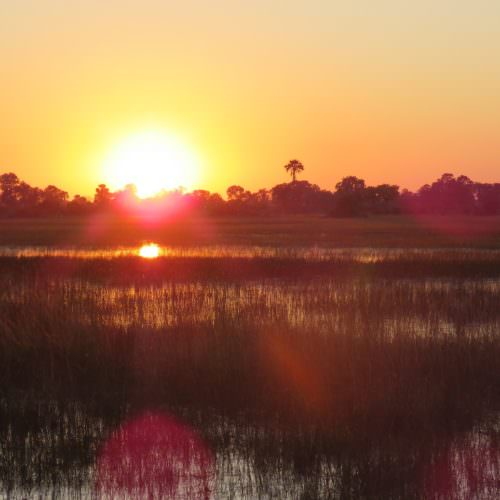 Kujwana riding safari exploring the western region of Botswana's Okavango Delta. African sunset.