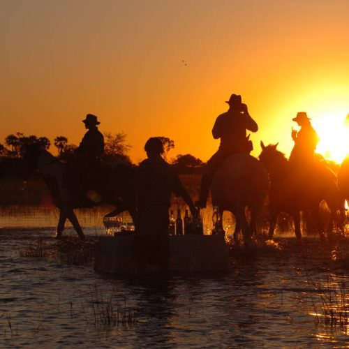 In The Saddle. Riding Safari Holiday at Macatoo, Okavango Delta, Botswana. Horses at sunset.