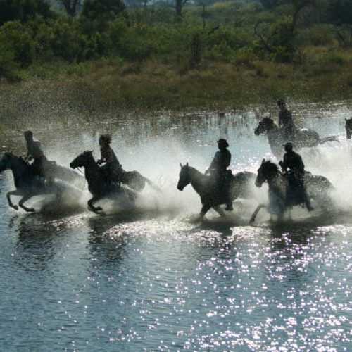 In The Saddle. Horse Riding Safari Holiday at Macatoo, Okavango Delta, Botswana. Galloping through the water.