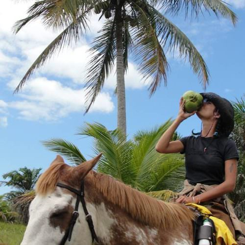 Riding Holidays in Brazil. Beach riding in Bahia. Rider on horse drinking from coconut.