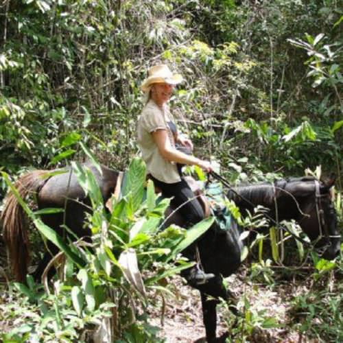 Riding Holidays in Brazil. Beach riding in Bahia. Horse and rider in the rainforest.