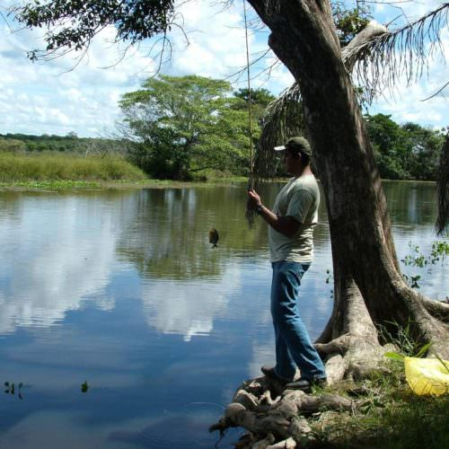 Trail riding holidays in the Pantanal, Brazil. Fishing.