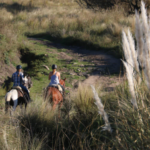 Riding, Los Potreros. Riding holidays in Argentina.