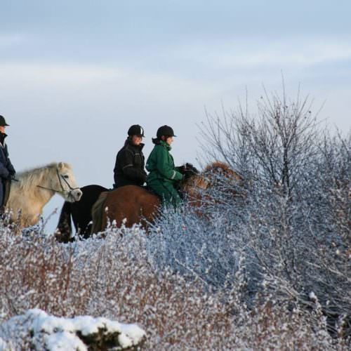 Riding in the snow in Iceland