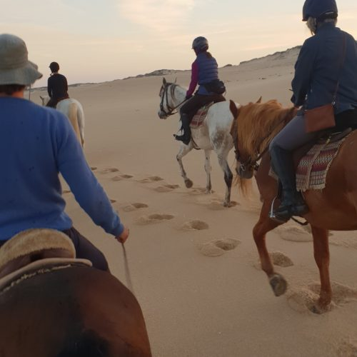 Beach riding in Portugal