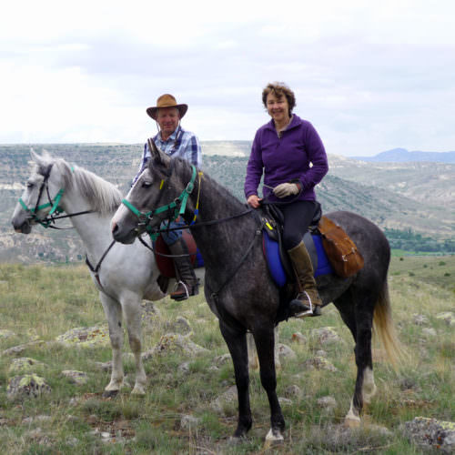 Camping and hotel based horse riding holidays in Turkey. Horses