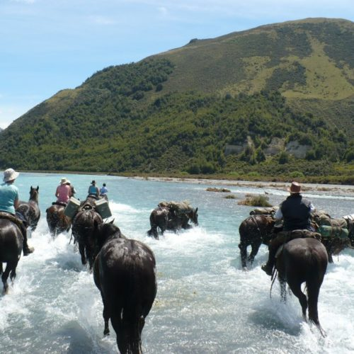 Crossing rivers with horses