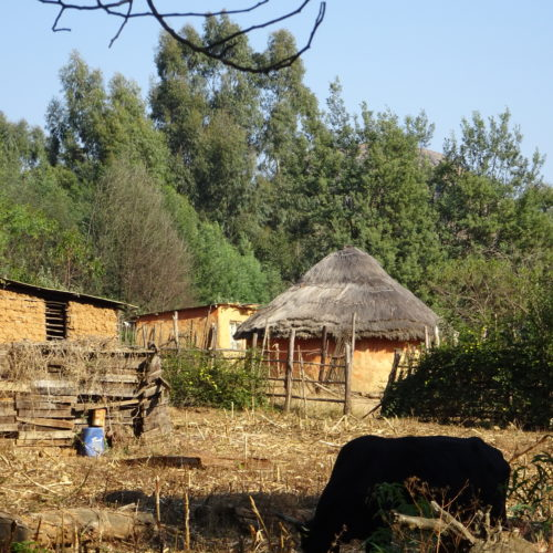 Living in Swaziland