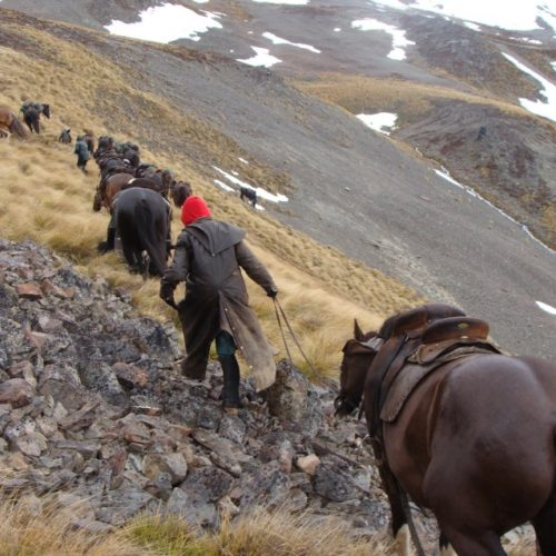 Leading horses on the steeper sections.