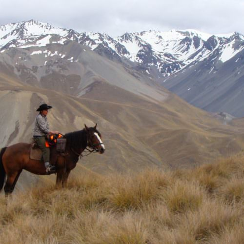 Riding in South Island, New Zealand