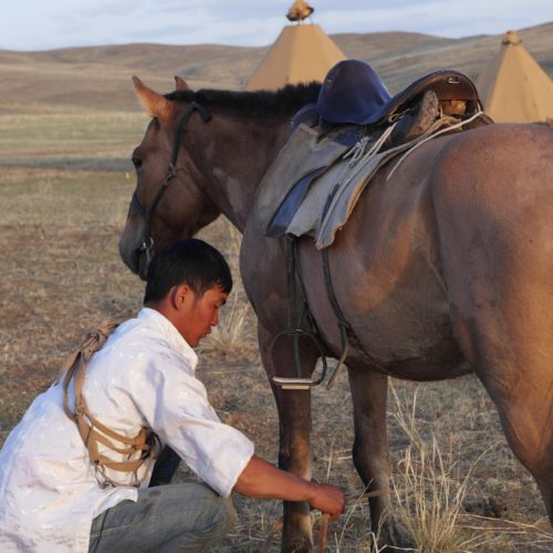Mongolia riding saddle
