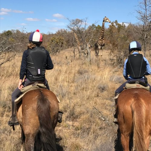 South Africa, Horse Riding