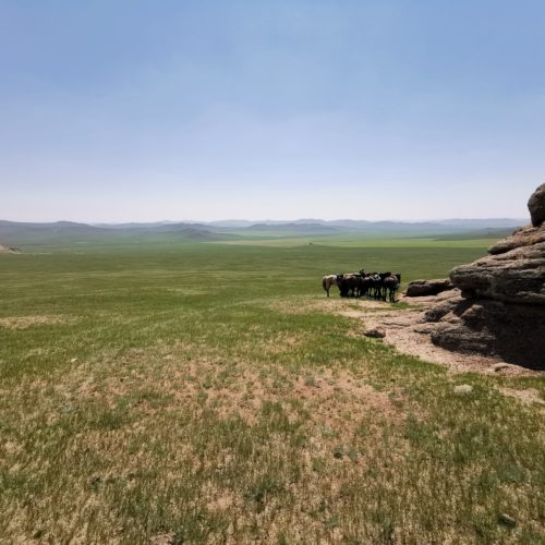 Taking a break in Mongolia