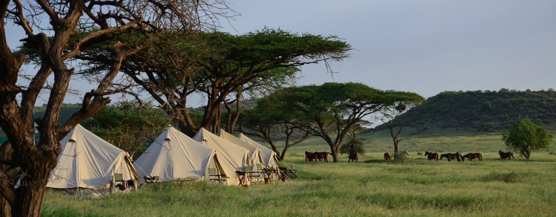 Riding Safari across the Serengeti - Tanzania