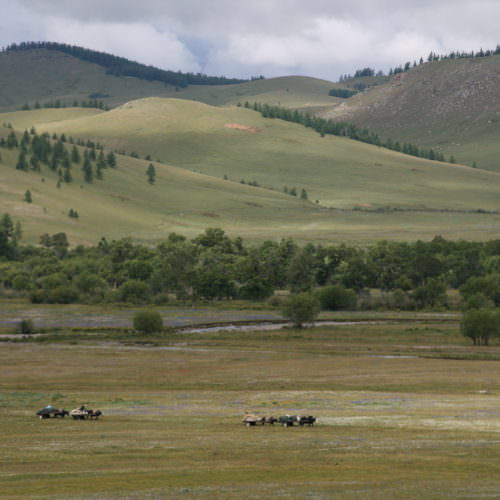 Mongolia moving camp