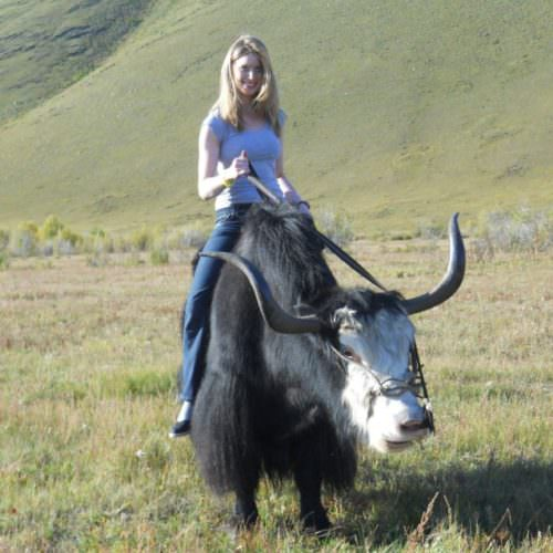 Mongolia yak riding