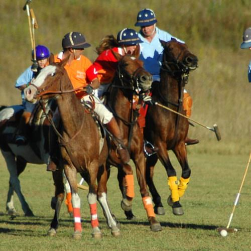 Polo at Estancia Los Potreros Argentina