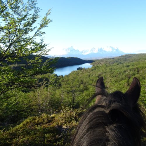 Riding in Torres del Paine