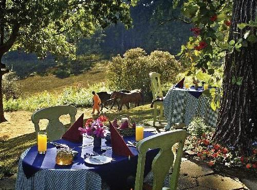 Riding holidays in Swaziland. Safaris in Africa. Lunch. Picnic.