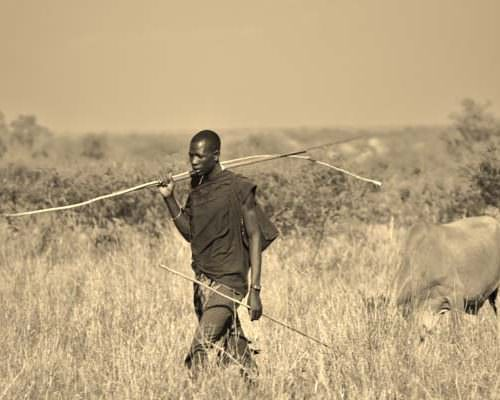 Tanzania herder with cattle