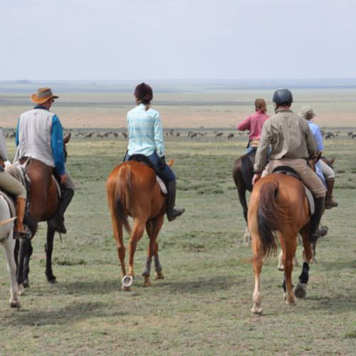 Riding in serengeti