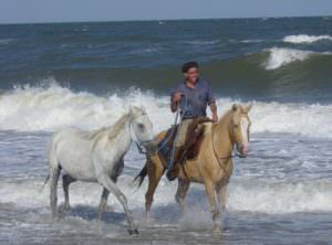 Gaucho in sea