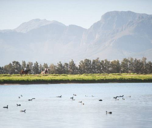 Cape Winelands lakes