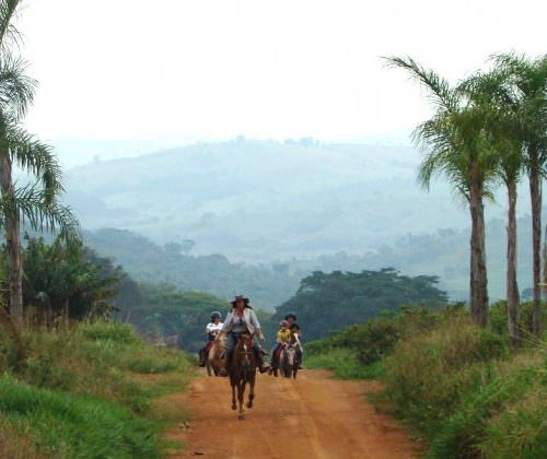 Trail riding holidays in Brazil. The Coffee Trail. Horses.